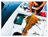 seaworker_017